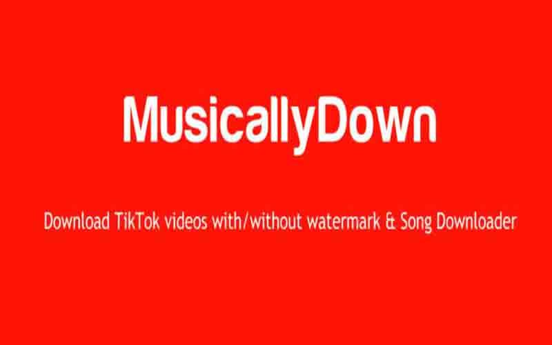 MusicallyDown.com Unduh Vidio TikTok Tanpa Tanda Air