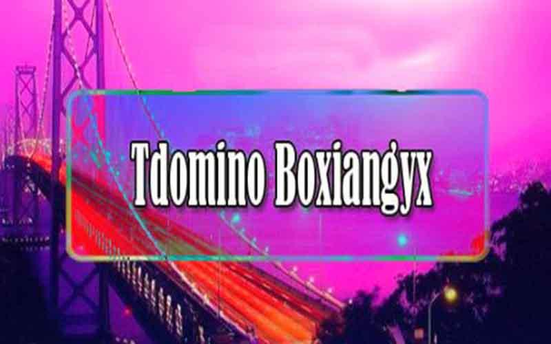 Tdomino Boxiangyx